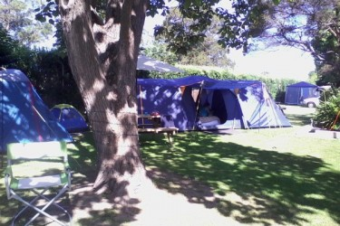 Summer - Camping in a shady spot