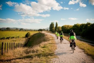 Cycling the Hawke's Bay trails